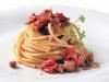 spaghetti-sito